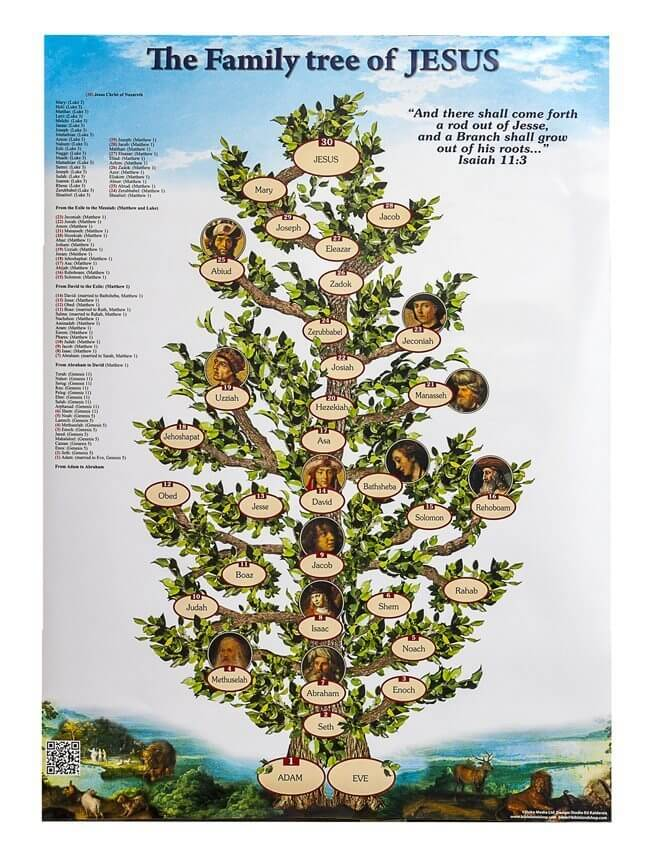 The Family Tree of Jesus – White