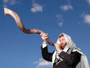 shofars for sale